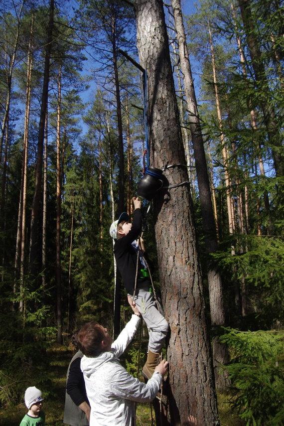Baltijos aplinkos forumas Lietuvoje nuotr./Viena iš festivalio programos atrakcijų