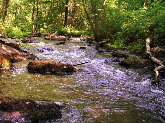 """""""Upių labirinto"""" nuotr./Siesartis"""
