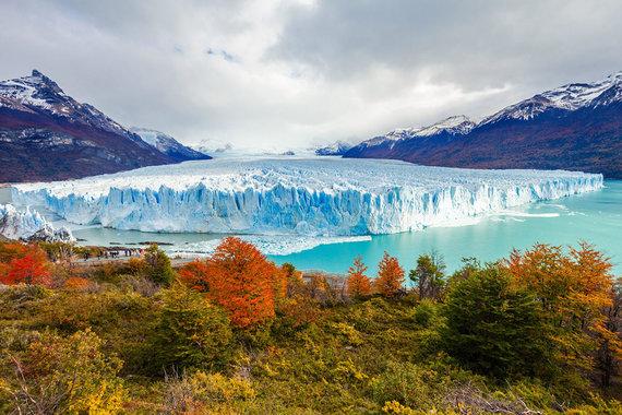 Shutterstock nuotr./Perito Moreno ledynas