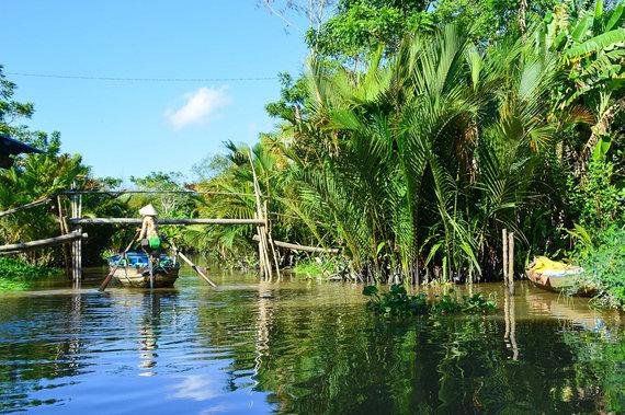 Shutterstock nuotr./Mekongas