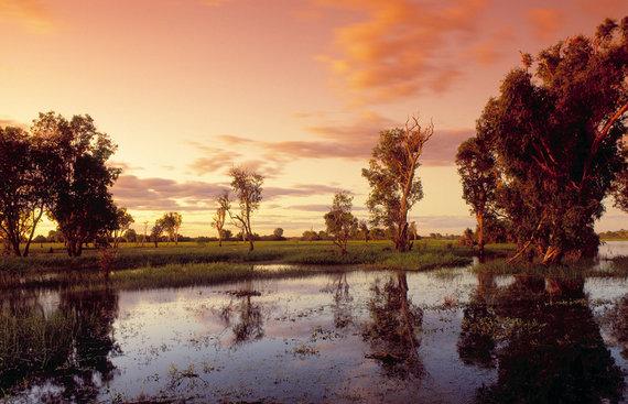 Shutterstock nuotr./Kakadu nacionalinis parkas