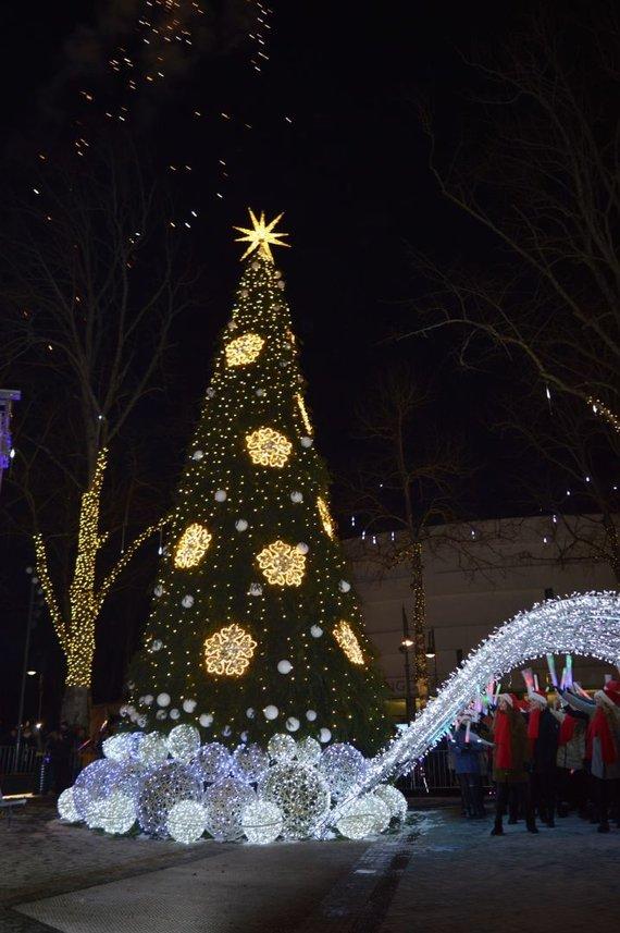 Palangos savivaldybės nuotr./Palangos eglė suspindo tūkstančiais kalėdinių šviesų.