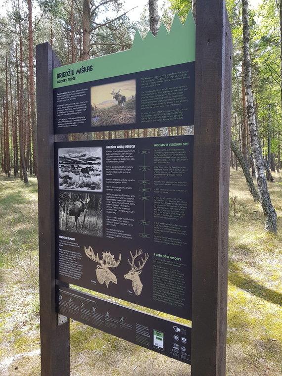 J. Andriejauskaitės / 15min nuotr./Briedžių miškas