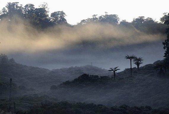 """AFP/""""Scanpix"""" nuotr./Papua Naujoji Gvinėja"""