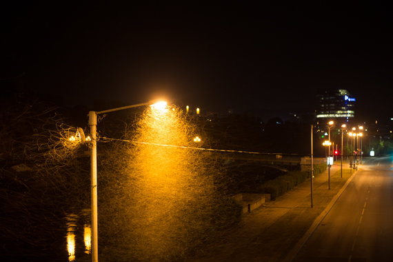 Martyno Siruso/adfoto.lt nuotr./Lašalai A.Goštauto gatvėje, Vilniuje.