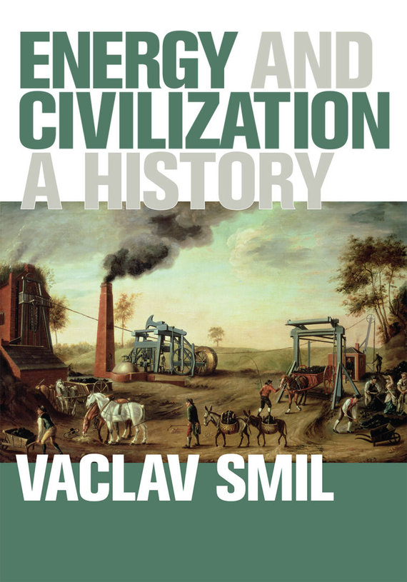 "Knygos viršelis/Knyga ""Energy and Civilization: A History"""