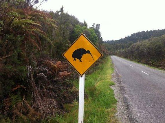 L.Dapkus/Naujosios Zelandijos keliai