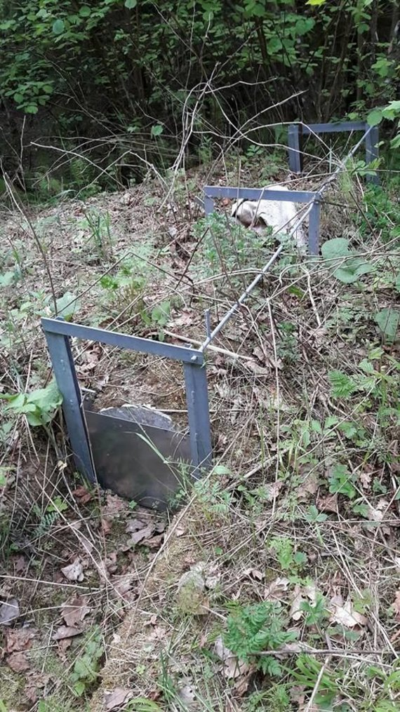 Miškuose aptikti keisti įrenginiai