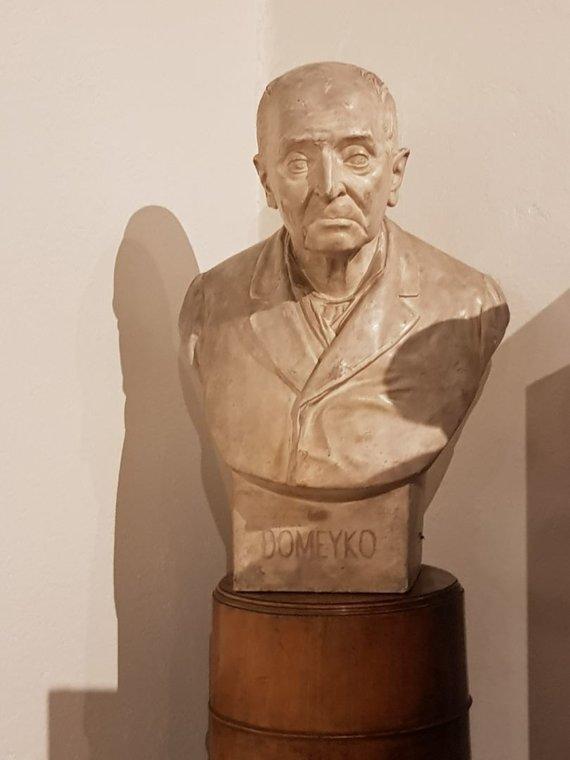 Simono Teškevičiaus nuotr./Ignoto Domeikos muziejus Santjage, Čilėje