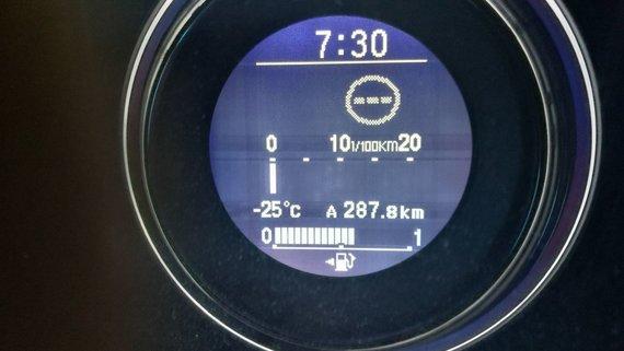 15min skaitytojo Audriaus nuotr./25 laipsnius šalčio termometras užfiksavo Vilniaus rajone, Didžiųjų Lygainių kaime