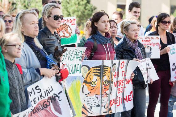"""Luko Balandžio / 15min nuotr./Piketo """"Stop smurtui prieš gyvūnus"""" akimirka"""