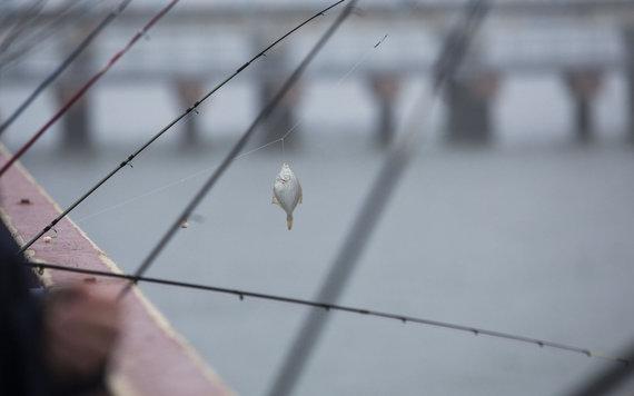 Luko Balandžio/Žmonės.lt nuotr./Žvejai
