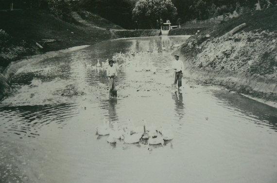 A.Kaminskienės nuotr./S.K.Kosakovskio fotografijos
