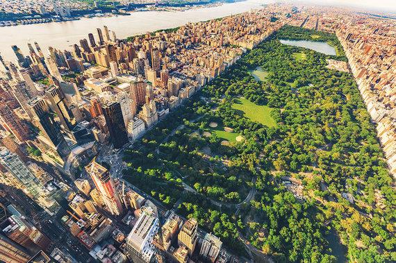 Shutterstock.com nuotr./Niujorkas
