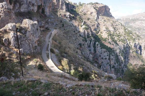 Aušrinės nuotr./Libano kalnai