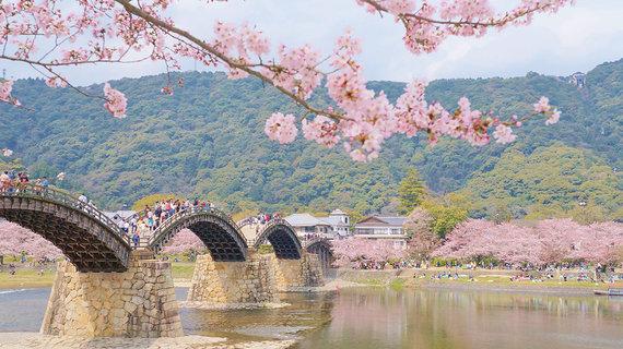 Shutterstock.com nuotr./Kintai tiltas Japonijoje