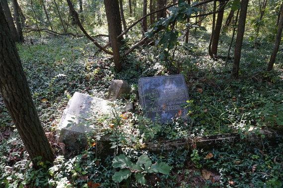 """Tikslas – Amerika"" nuotr./Ledfordo kapinės"