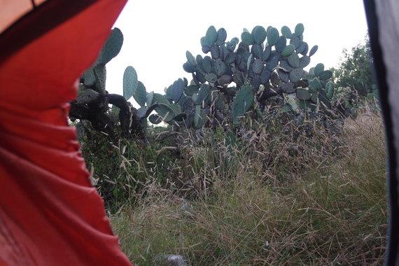 Ugnės Kraulaidytės nuotr./Kelionė Meksikoje