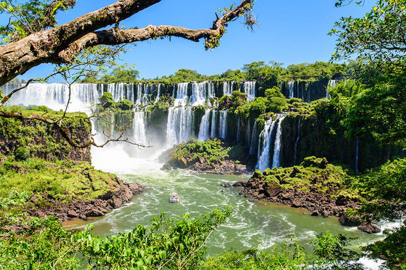 Shutterstock.com nuotr./Igvasu, Argentina