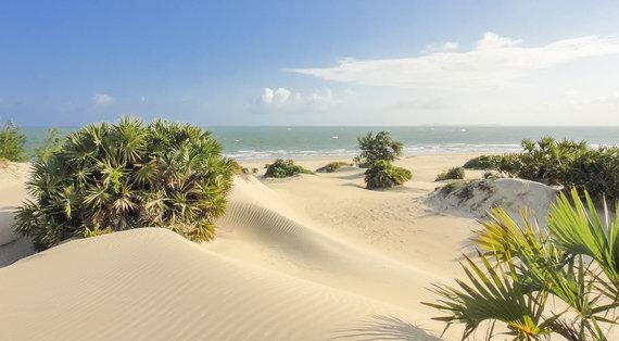 Shutterstock.com nuotr./Shela paplūdimys, Lamu sala, Kenija