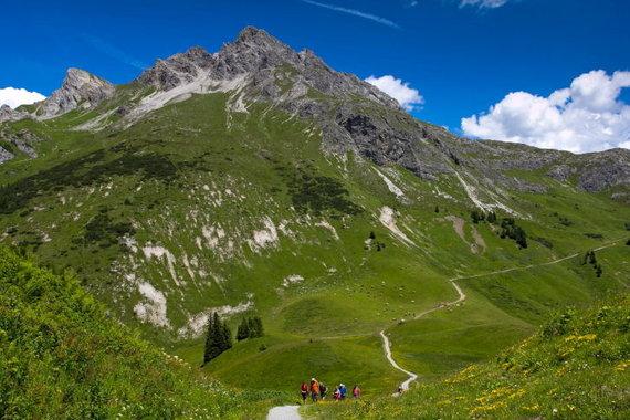 Kristinos Stalnionytės nuotr./Vasarą po Alpes smagu pasivaikščioti gamtos takais