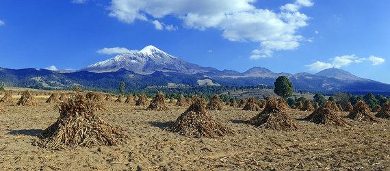 Shutterstock.com nuotr./Orisabos ugnikalnis, Meksika