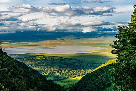 Shutterstock.com nuotr./Ngorongoro draustinis