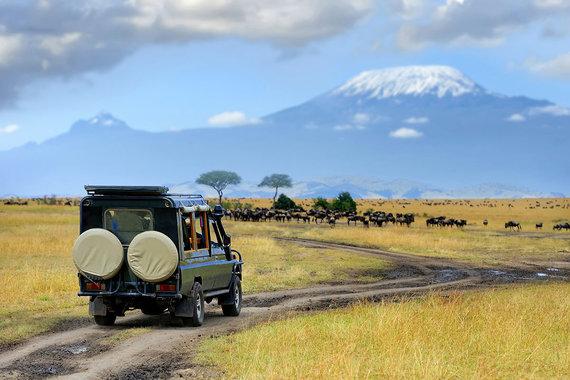 Shutterstock.com nuotr./Serengečio nacionalinis parkas
