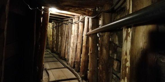 V.Mikaičio nuotr./Gyvybės tunelis