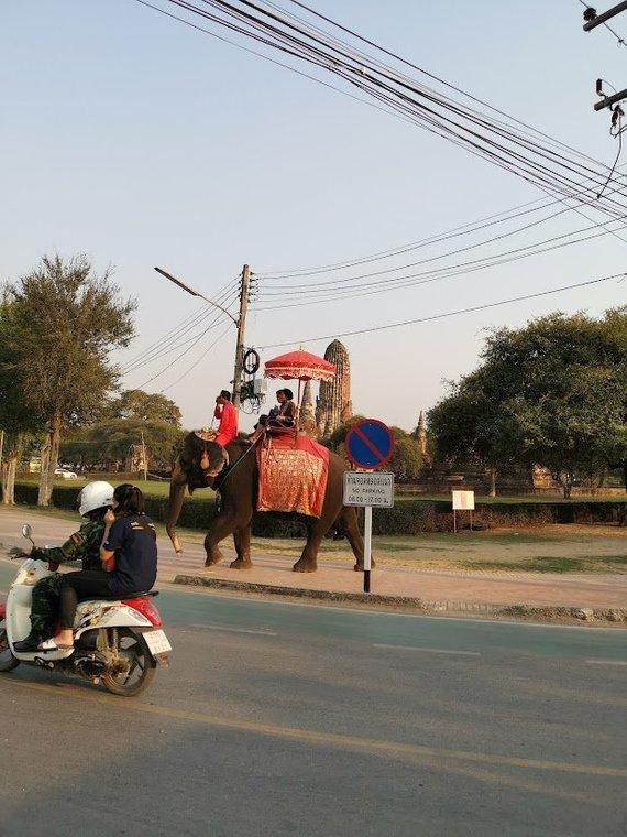 Tailandieciai.lt nuotr./Motoroleris – įprasta susisiekimo priemonė Tailande