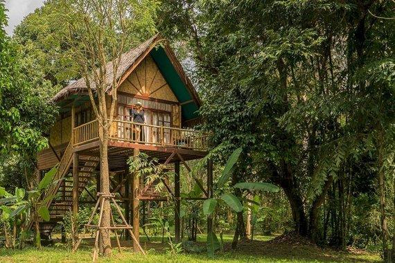 Tailandieciai.lt nuotr./Namelis medyje Tailande