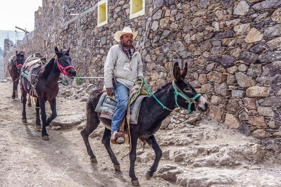 Paul Stewart nuotr./Gyvenimas Meksikoje