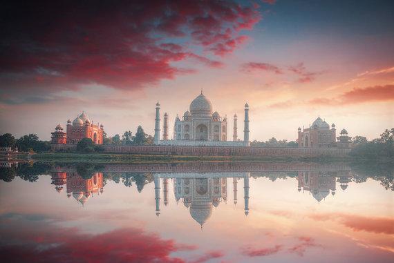 Shutterstock.com nuotr./Agra
