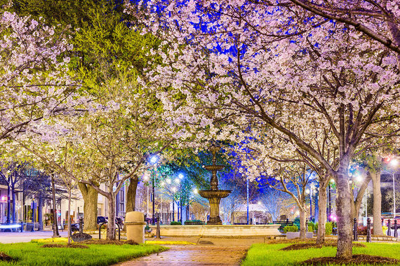 Shutterstock.com nuotr./4. Meikonas, JAV