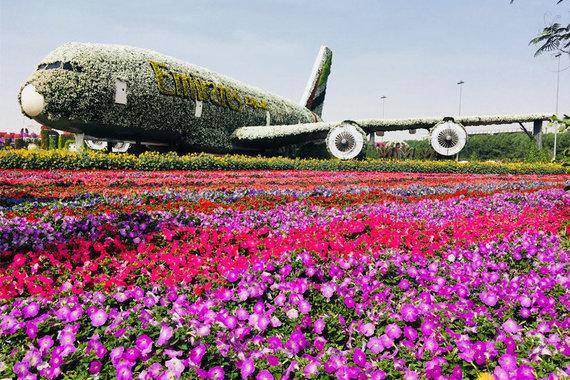 Skrendu.lt nuotr./Stebuklu sodas Dubajuje