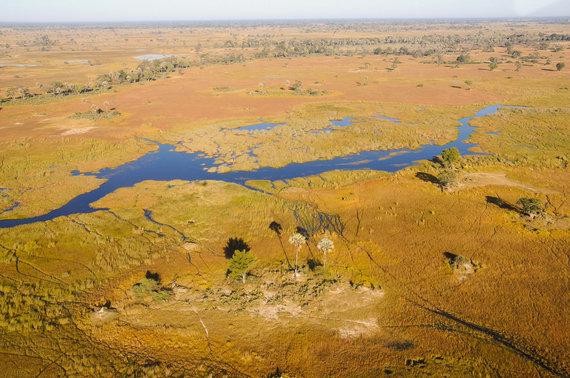 Travel Planet nuotr./Botsvana, Okavango delta