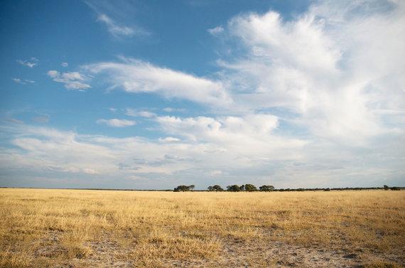 Travel Planet nuotr./Namibija, Etošos nacionalinis parkas