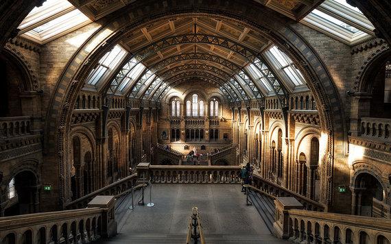 Shutterstock.com nuotr./Londono gamtos istorijos muziejus, D. Britanija