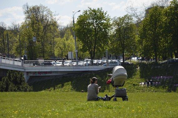 G. Adinavičiūtės/15min nuotr./Pieva prie Baltojo tilto Vilniuje