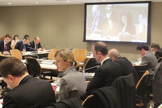 URM nuotr./Jungtinėse Tautose
