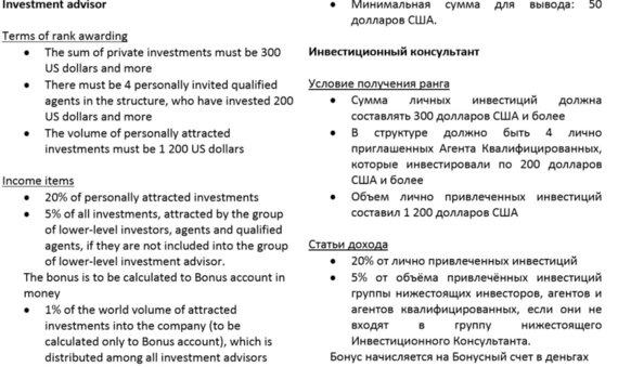 skywayinvestgroup.com nuotr./Štai tokie hierarchijos aprašai skelbiami A.Junickio imperijos puslapyje