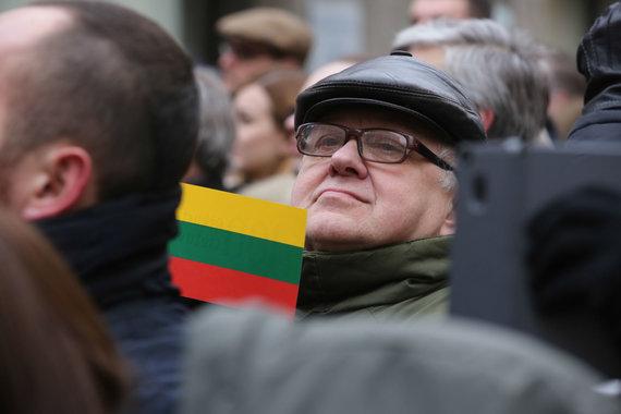 Vidmanto Balkūno / 15min nuotr./ Lietuvos vėliava