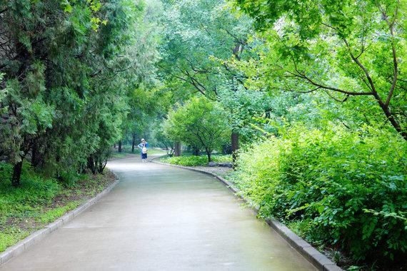 """""""Scanpix""""/""""Sipa USA"""" nuotr./Pekino botanikos sodas po lietaus"""