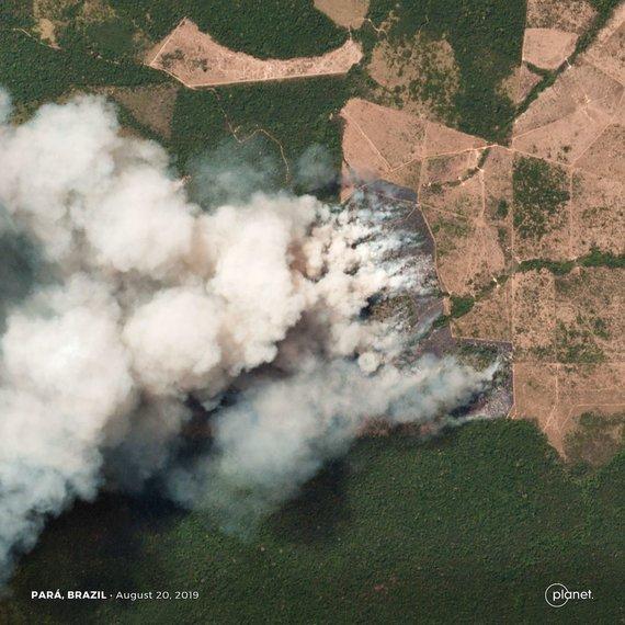 """AFP/""""Scanpix"""" nuotr./Gaisras Amazonės miškuose"""
