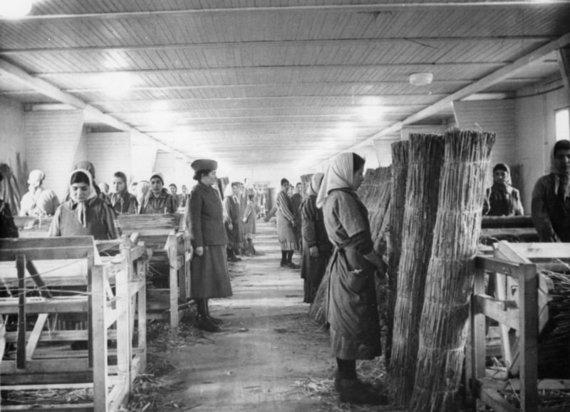 JAV Holokausto memorialo muziejaus nuotr./Priverstinis darbas Ravensbruko stovykloje