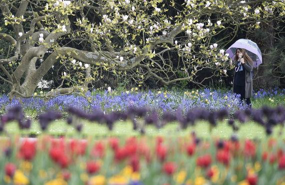 """""""Reuters""""/""""Scanpix"""" nuotr./Pavasaris Londone, Didžiojoje Britanijoje"""