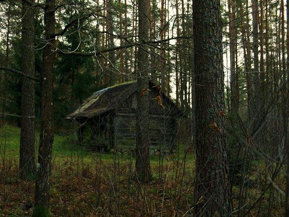 A. Dovydaitytės nuotr./Troba Družilių kaime, Švenčionių rajono savivaldybėje