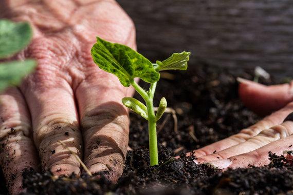 123RF.com nuotr./Ekologiškas ūkininkavimas