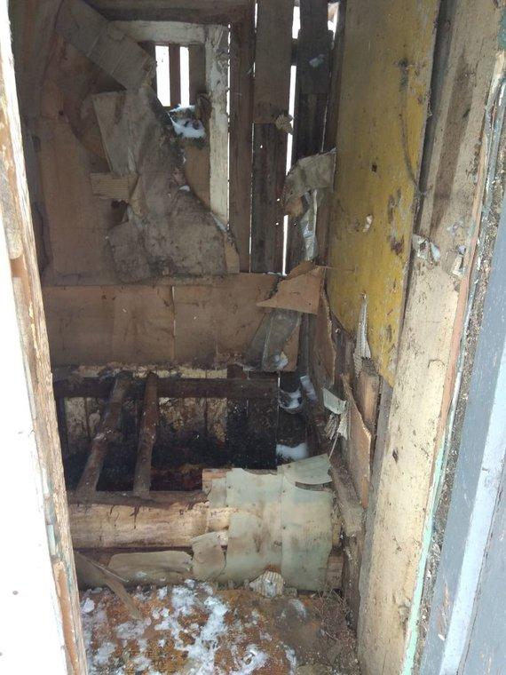 Dimitrijaus Kuprijanovo nuotr./Lauko tualetas, kuriame aptiktas naujagimio kūnas