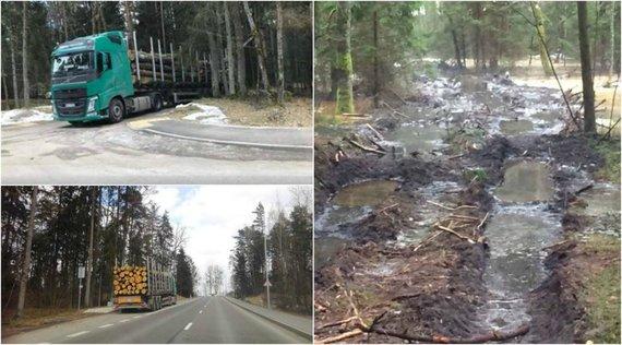 Skaitytojų nuotr./Kulautuvos bendruomenę neramina jau keletą metų gana gausiai kertami miškai